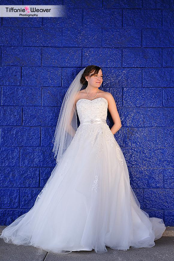 Quad-City Wedding Photography